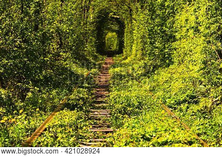 Scenic Nature Landscape View Of Old Railway Passes Through Natural Tunnel Formed By Trees. Famous Tu