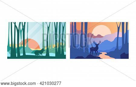 Beautiful Natural Landscape Set, Forest Wilderness Scenery With Wolf And Deer Wild Animals Vector Il