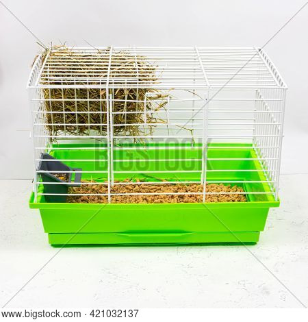 Pet Cage With Green Pallet Of Shavings, Sawdust, Feed, Hay And Hay. Keeping Pets In Cages. Side View