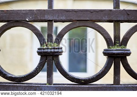 Detail Of An Old Wrought Iron Fence With A Round Pattern Covered With Moss. Close-up, Macro, Selecti