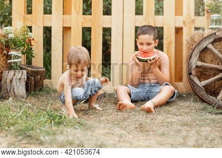 Beautiful Family On The Backyard Lawn. Childs Expression. Two Happy Little Boys Playing In The Backy