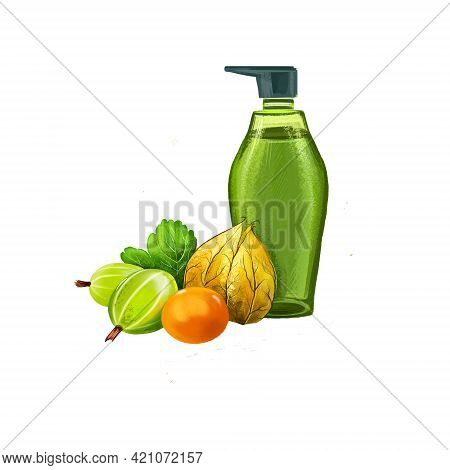 Amla - Gooseberry Ayurvedic Herb Digital Art Illustration Isolated On White. Alma Gel Cream Cosmetic