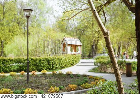 Bird Feeder In The Form Of A House Hanging On A Tree. Park Sunny Summer Day. Small Wooden Bird House
