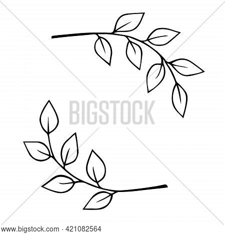 Plant Twigs With Leaves Hand Drawn Doodle Outline. Frame Border Black Design Element. Wedding Invita
