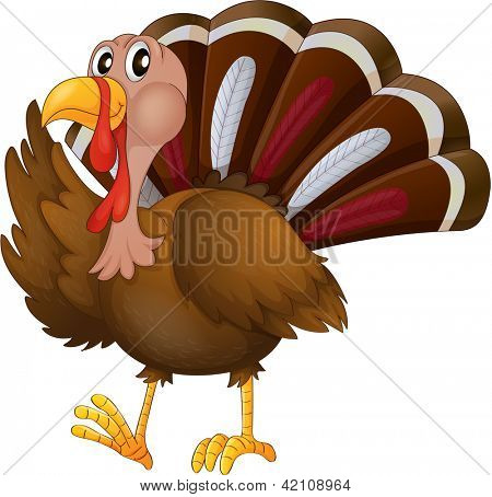 Illustration of a turkey on a white background