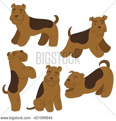 Set Of Cute Terriers Isolated On White Background. Vector Image.