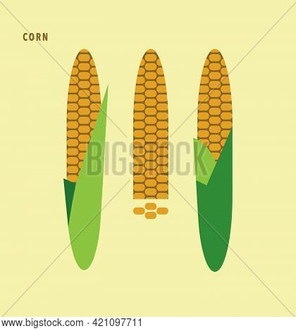 Ripe Corn Cobs, Corn Seeds. Set Of Fresh Vegetable, Isolated, Label Packaging Design Element. Health