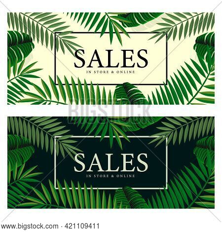 Summer Sale Banners With Palm. Background For Banner, Poster, Flyer. Vector Illustration