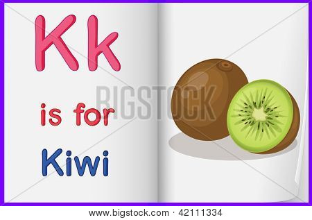 Illustration of a picture of a kiwi fruit in a book on a white background