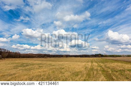 Nice spring landscape with meadow under clouds in sky