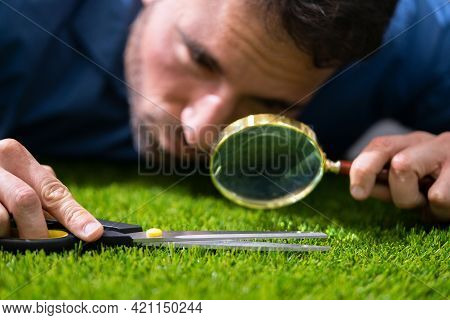 Compulsive Obsessive Disorder. Perfectionist Cutting Garden Grass