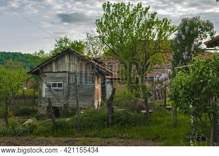 Old Wooden Shed In Rural House Village Backyard In Spring Time