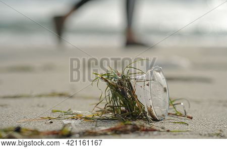Disposable Plastic Cup Discarded On Sea Coast Ecosystem With Walking People In Background, Polluted
