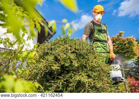 Professional Gardener Spraying Garden Fungicides To Kill Parasitic Fungi In His Clients Backyard Gar
