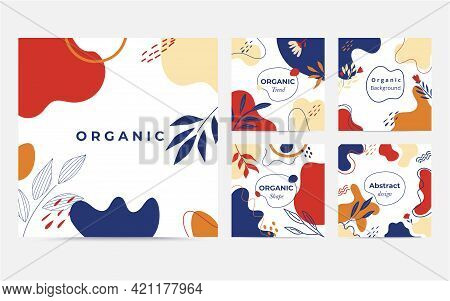 Organic Shape Collection. Minimal Cover And Background. Social Media Post And Template With Organic