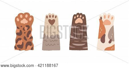 Set Of Cute Cat Paws With Soft Pads. Funny Adorable Fluffy Feet Of Kittens. Kittys Hands Raised Up.