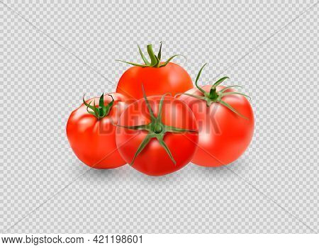 Tomato Set. Red Tomato Collection. Photo-realistic Vector Tomatoes On Transparent