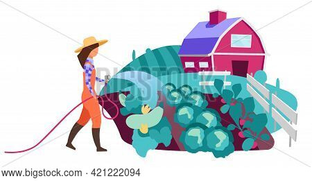 Female Farmer Watering Vegetable Garden Flat Vector Character. Farm Worker With Water Hose. Organic