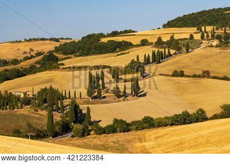 Cipressi di Monticchielo, Typical Tuscan landscape near Montepulciano, Italy