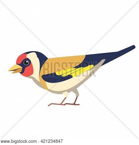 European Goldfinch Is A Small Passerine Bird In The Finch Family. British Finches Bird Cartoon Flat