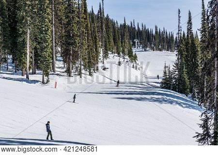 Revelstoke, Canada - March 17, 2021: People On Downhill Ski Trail With Tall Green Trees In Backgroun