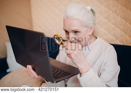 Elderly Woman Grandmother Learns To Work At Home On Laptop Computer And Internet With Magnifier.