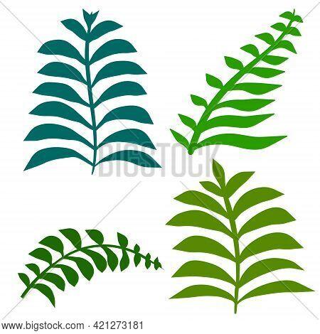 Fern Leaf. Element Of Nature And The Forest. Green Bracken Plant. Set Of Flat Cartoon Illustration I
