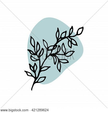 Icons. Branch With Leaves. Clipart. Linear Illustration Artistic Lines And Strokes. Doodle And Carto