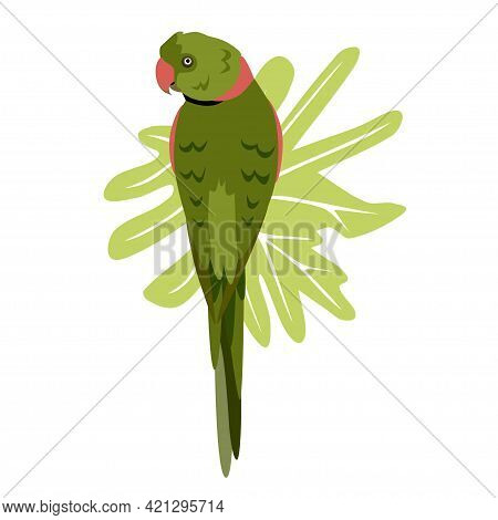Tropical Hand Drawn Colorful Parrott With Leaf Background. Necklace Parrot Green Plums Red Beak. Vec