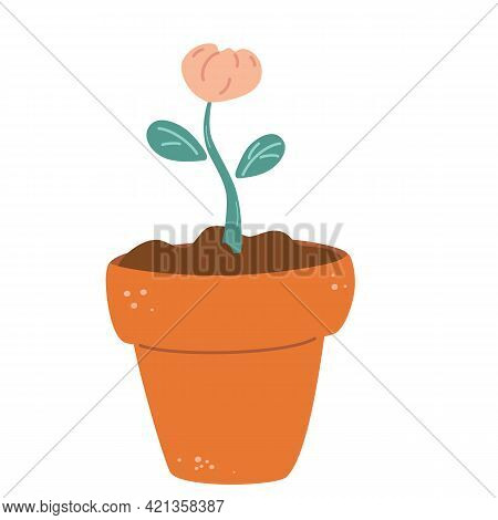 Blooming Flower In A Pot. Floral Pot. Plant Bloom Stages. Growing Plant. Vector Cartoon Flat Illustr
