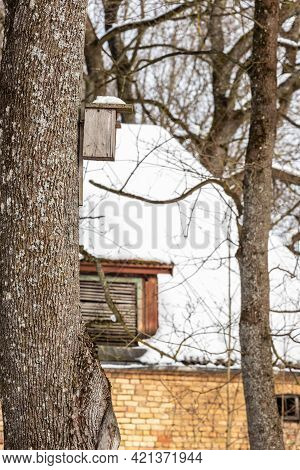 Square Handmade Birdhouse On Tree. Vertical Photo Of Aged Homemade Starling-house On The Big Tree Tr