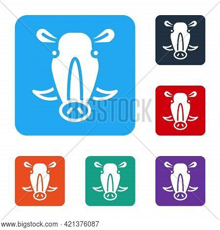 White Wild Boar Head Icon Isolated On White Background. Animal Symbol. Set Icons In Color Square But