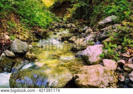 Beautiful River Flowing Over Rocks And Through Forest Nature. Green Trees, Fast River Stream.