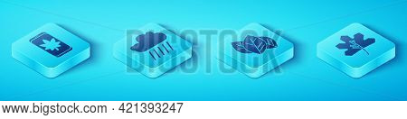 Set Isometric Leaf On Mobile Phone, Cloud With Rain, Leaf Or Leaves And Leaf Or Leaves Icon. Vector