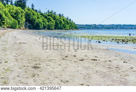 A View Of The Beach And Shoreline At Saltwater State Park In Des Moines, Washington.