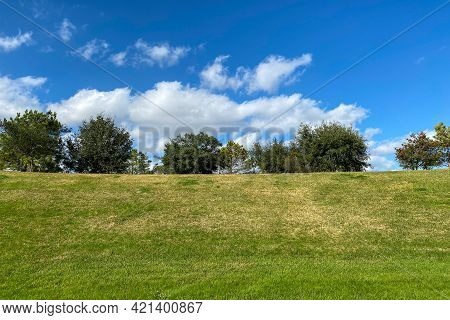 Grass Filled Hill With Bright Lush Trees On Horizon With Puffy White Clouds And Sunny Blue Sky