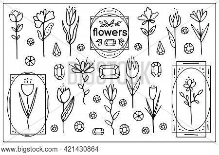 Set Vector Elements With Flowers, Frames And Crystals. Logo Design For Flower Shop, Packaging Design