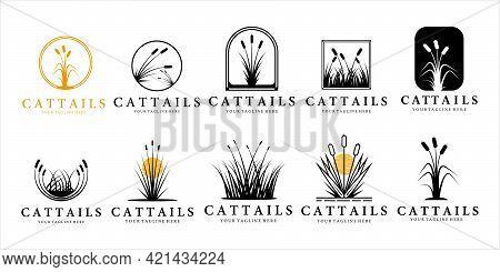 Set Of Cattails Or Reed Logo Vintage Vector Illustration Template Design. Bundle Collection Of Catta