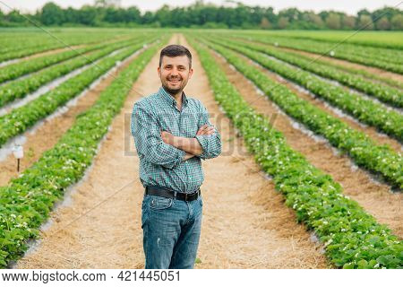 Portrait Of A Modern Bearded Farmer Man With Crossed Arms Looking At Camera Stands In The Agricultur