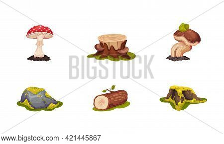 Forest Elements With Mossy Stump, Mushrooms And Log Vector Set