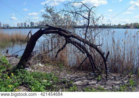 Ecology of Ukraine. Trash near the lake in Ukrainian capital. Environmental contamination. Illegal junk dump. May 9,2021. Kiev , Ukraine