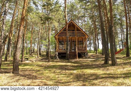 Small Wooden House In The Middle Of A Beautiful Pine Forest In The Summertime During The Day. Conife