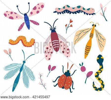 Big Set Of Doodle Insects. Beetle, Butterfly, Moth, Worm, Dragonfly, Snake. Insects Collection. Butt