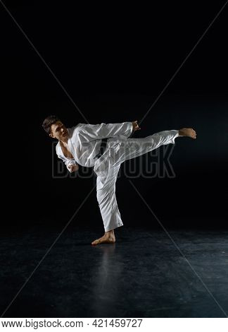 Male karateka, fighter in a combat stance