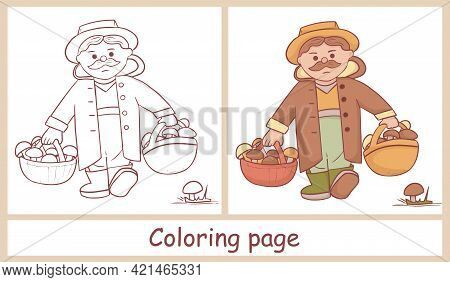 Cute Character Of A Mushroom Picker. Grandpa With Two Baskets Of Various Mushrooms. Line Art. Colori