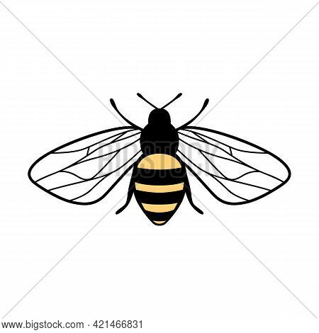 Vector Cute Bee Illustration In Flat Style. Cartoon Flying Honey Bee Character Isolated On White Bac