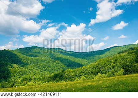 Rural Landscape With Field And Pasture On The Hill. Beautiful Countryside Scenery In Mountains. Sunn