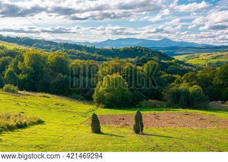 Autumnal Rural Landscape In Mountains. Wonderful Transcarpathian Countryside Scenery On A Bright Aft