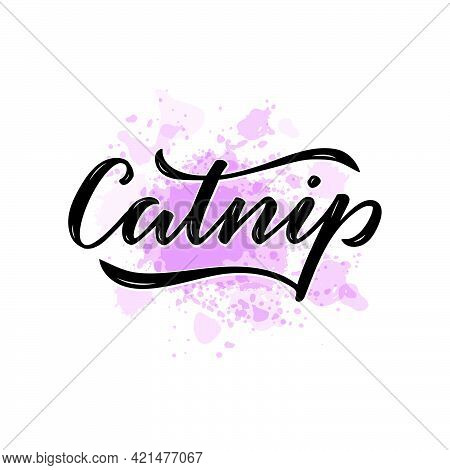 Vector Illustration Of Catnip Lettering For Packages, Product Design, Banners, Stickers, Spice Shop