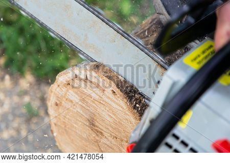 A Working Tool, A Chainsaw In Motion Cuts Wood A Log, Sawdust Fly